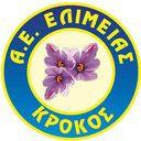 Shma AE Elimeias Kozanis